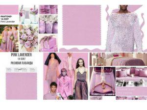 Pink Lavender (розовая лаванда