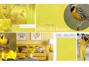 Meadowlark (желтый жаворонок)